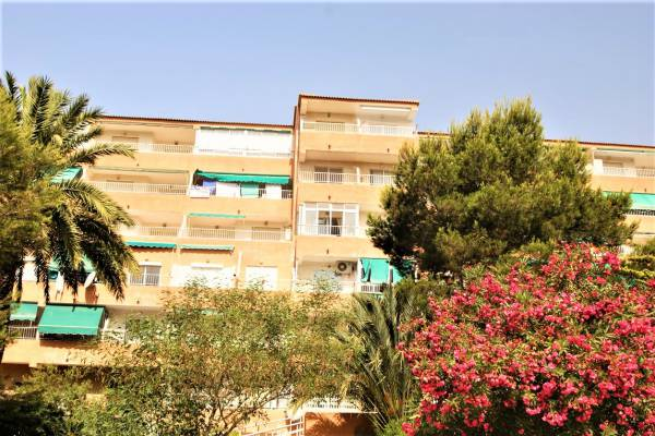 Appartement - Resale - Guardamar Del Segura - Pinomar